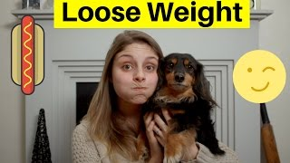 HOW TO HELP YOUR DOG LOSE WEIGHT - 5 GREAT STEPS