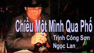 Chiều Một Mình Qua Phố (Trịnh Công Sơn - Ngọc Lan)