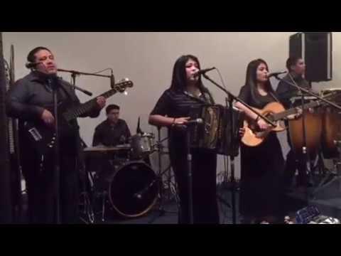 Descargar Video Dedicados Al Rey - Poderoso Dios en Rockport Tx