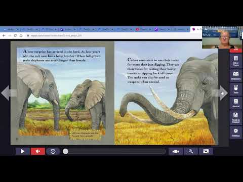 Thursday Science 4/30/20 An Elephant Grows Up Read Aloud