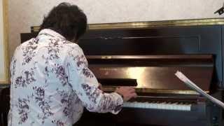 スタインウェイピアノ Z114 イマジン グランドギャラリー