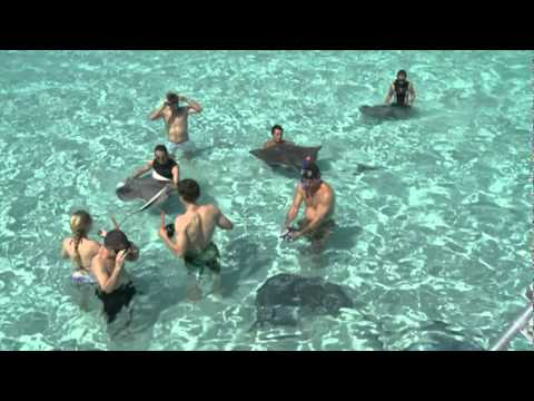 Grand Cayman Cruise Port Video Doovi