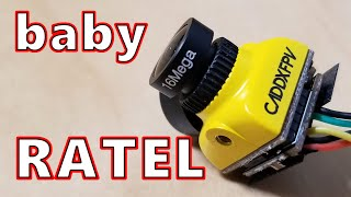 YouTube動画:Best FPV Camera now SMALLER! // Caddx Baby Ratel 🔥📸