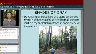 Silviculture 101 Systems and Terminology