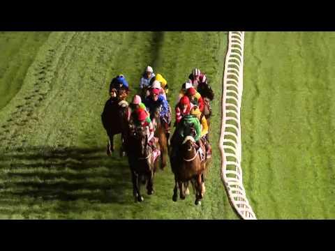 DWCC Meydan Racecourse 03-03-16, Race 6 Group 3 Nad Al Sheba Trophy Sponsored by Emirates SkyCargo