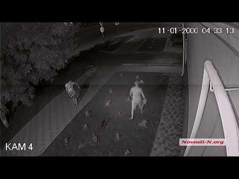 Видео 'Новости-N': В Николаеве пара украла цветы