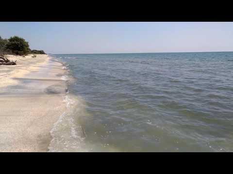 Plaja salbatica de la Perisor, Delta Dunarii