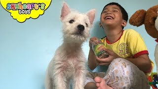 Toddler got his FIRST PUPPY - Owie The Dog with Skyheart's puppy toys for kids