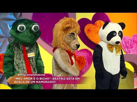 Panda Conquista O Coração De Participante E é Escolhido No Meu Amor é O Bicho