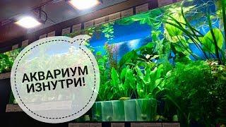видео Чистка аквариумов в Петербурге