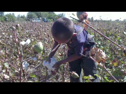 Cotton exporters force child labor