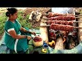 Inside Mutton Tikka!!( BBQ Meat ) Recipe | Village Style Cooking Grilled Mutton Kabab | Sea Foods