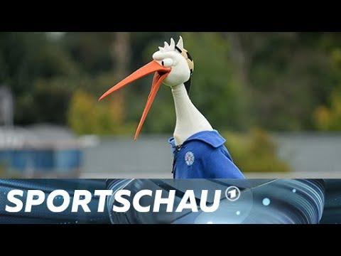2. Bundesliga: Die 5 größten Überraschungen der Hinrunde | Sportschau