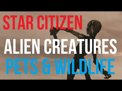 Star Citizen Animals, Pets & Alien Creatures