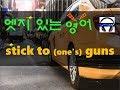 ▶ stick to (one's) guns ◀ 무슨 뜻/뉘앙스?! 실제 원어민 발음은 어떨까? l 귀가 트이는 영어ㅣ소리영어ㅣ영어 귀뚫기ㅣ미드 자막없이 보기