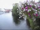 River Fergus, Ennis, County Clare