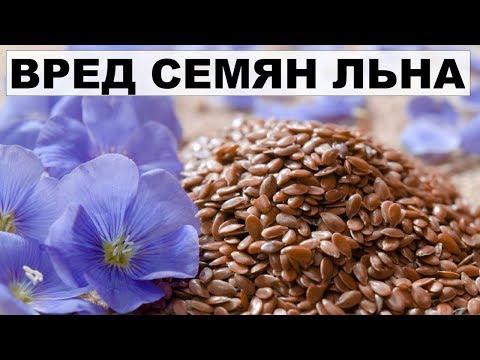 ВРЕД СЕМЯН ЛЬНА И ЛЬНЯНОГО МАСЛА.Противопоказания семян льна.