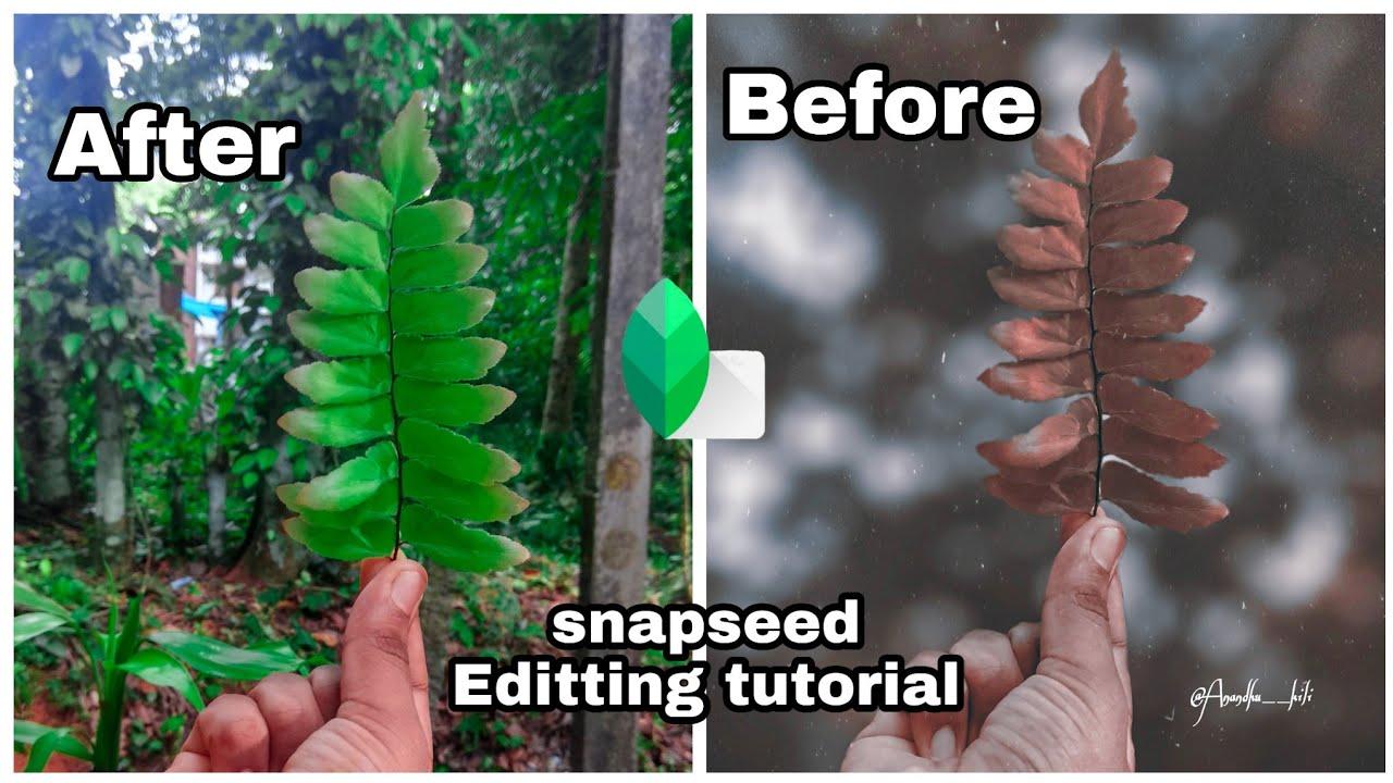 Snapseed Editting Tutorial || #snapseed #snapseedtutorial