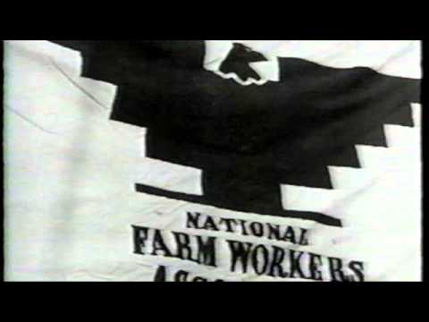 History of the Labor Movement
