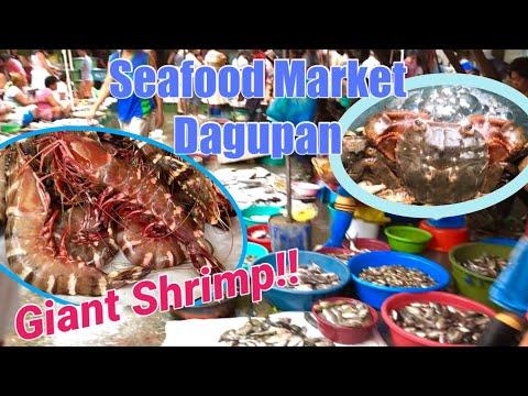 "Dagupan Seafood Market ""Huge Shrimps"" Philippines"