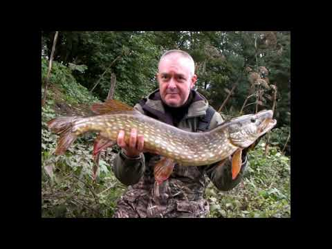 River Tees Pike Fishing (Flood Conditions) 5-10-2019