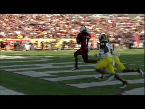 Connor Shaw to Ace Sanders Touchdown - Outback Bowl - South Carolina vs. Michigan