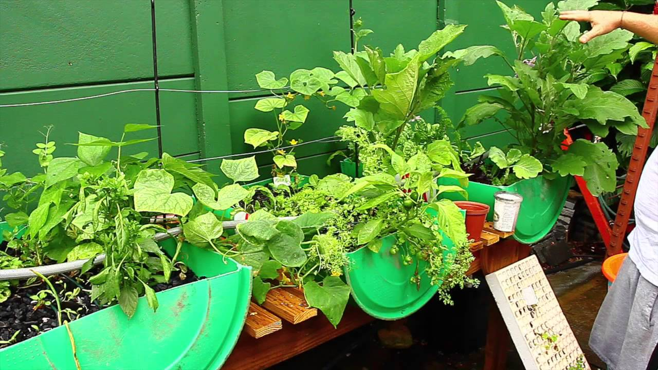 How To Build Your Own Hydroponic Vegetable Garden   YouTube