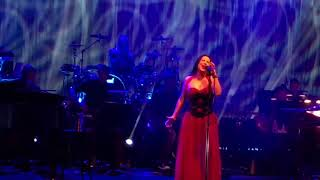 EVANESCENCE SYNTHESIS LIVE WITH THE SYDNEY SYMPHONY ORCHESTRA.