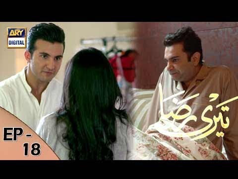 Teri Raza Episode 18 - 2nd November 2017 - ARY Digital Drama