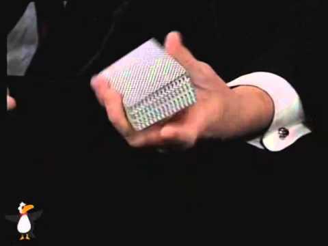 Daryl's Encyclopedia of Card Sleights   Set Vols  1   8   DVD