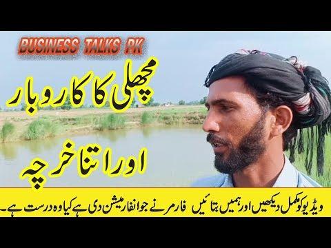 Fish Farming In Pakistan | How To Start Fish Farm | Fish Farming Business In Pakistan