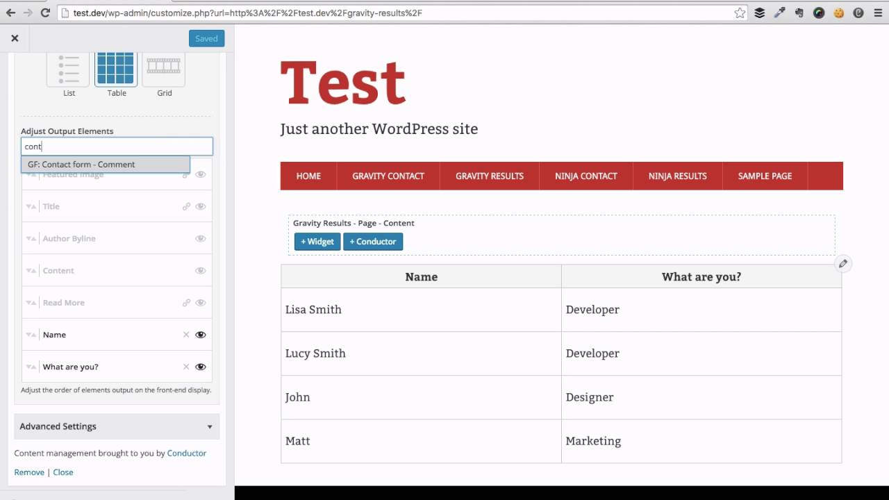 Display Gravity Forms entries on any WordPress page/post without code |  Conductor plugin