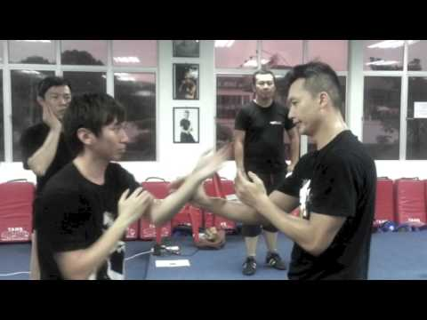 (詠春 Ving Tsun) - PVT Malaysia