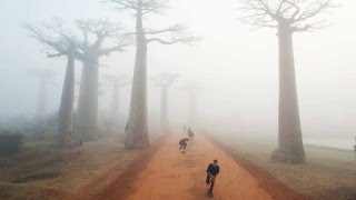 Skateboarding in Madagascar - Expect the Unexpected - Part 1