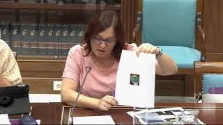 Nati Arnaiz (Podemos) sobre guardas rurales sin identificar y contratados irregular en el Teide