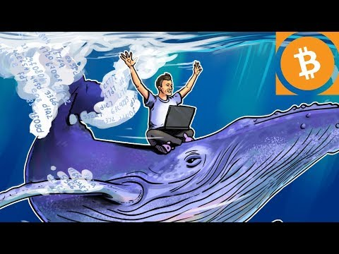 BITCOIN PRICE RALLY IN 2017 CAUSED BY ONE WHALE?! | Stellar Lumens (XLM) Crypto Supply Manipulation?