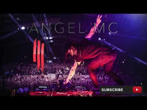 Skrillex - ACL Music Festival (2014 Red Bull)  (Angel Mc)