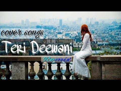 Teri Dewani (Remix)