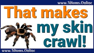 Make My Skin Crawl Idiom Meaning