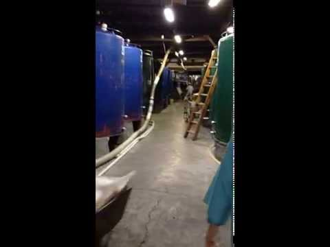 """""""Japan Experience"""" Sake brewery of Hideyoshi at Akita prefecture in Japan"""