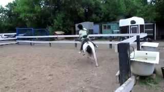 Конный спорт. Обучение верховой езде.(Всем привет! Меня зовут Ангелина. Это видео о том,как я учусь верховой езде. Я собрала в этом видео несколько..., 2015-08-08T14:22:55.000Z)