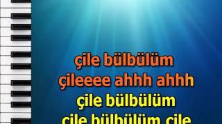 CILE BULBULUM CILE mpg karaoke