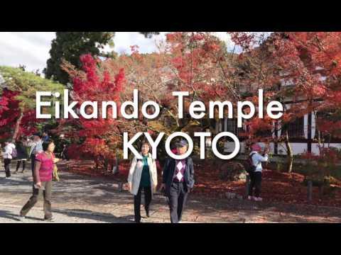 Walking around Eikando Temple, Nanzenji Temple Autumn leaves Kyoto Japan 2016 4k | 京都府・永観堂・南禅寺