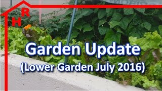 Garden Update - Gardening our Lower Garden (July 2016)