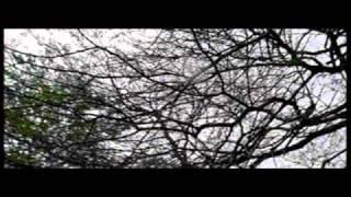 NEERANTARR -marathi film  Upendra Limaye,Veena Jamkar