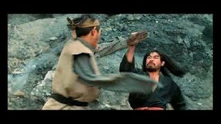 Le boxeur manchot (film d'art martiaux)