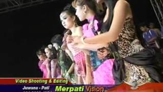 Gala gala - OM.Palapa Bendar, Pati Merpati Vision 2012
