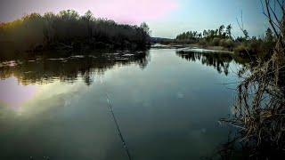 Рыбалка на донку 2021 В середине апреля на малой реке