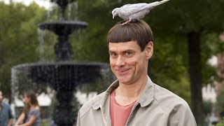 Dumb and Dumber To Official Trailer (2014) Jim Carrey, Jeff Daniels HD