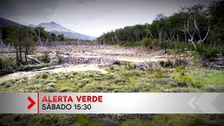 Alerta Verde - Programa 23/02/2019 (adelanto)